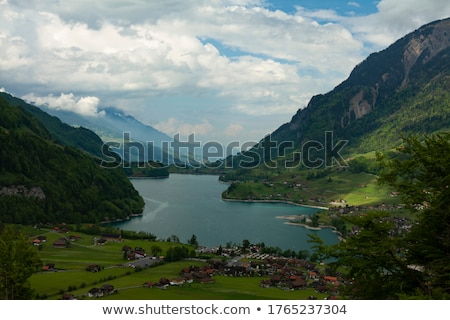 Grassland in front of lake and mountains  Stock photo © Ansonstock