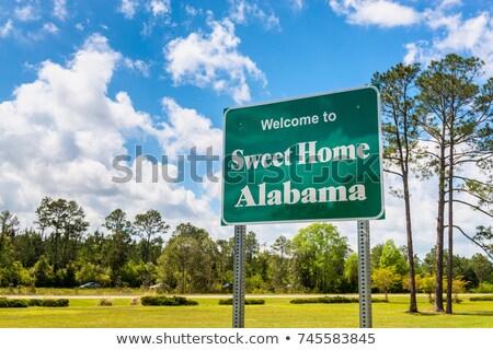 アラバマ州 · フラグ · 米国 · アメリカ · 3D · アイソメトリック - ストックフォト © Vectorminator