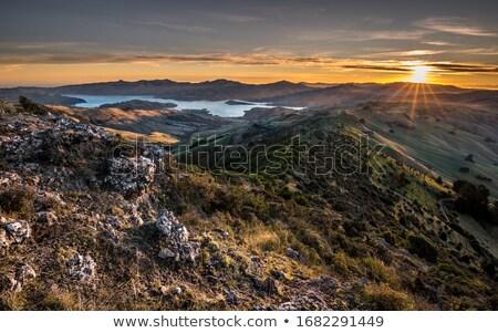 Zonsondergang zee bergen mooie bos natuur Stockfoto © REDPIXEL