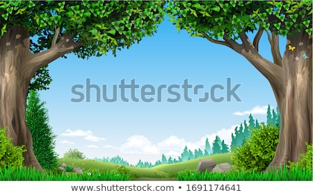 fairy tale forest in norway Stock photo © gewoldi