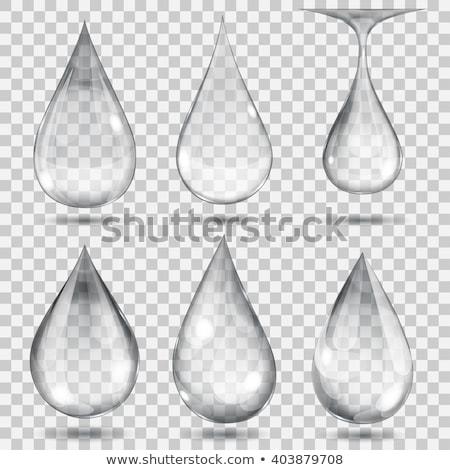 water drop spa Stock photo © Studiotrebuchet