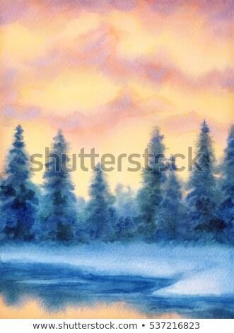 日没 · 空 · 冬 · 雪 · シーン - ストックフォト © nature78