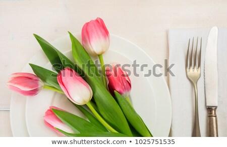 весны место Tulip свежие два зеленый Сток-фото © klsbear