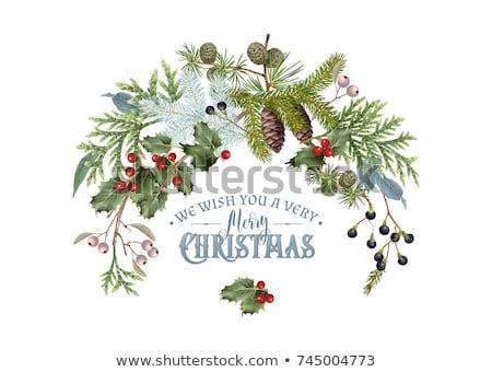Рождества · границе · декоративный · праздник - Сток-фото © lightsource
