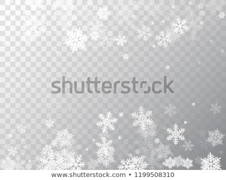 Flocos de neve branco diferente azul reflexão prato Foto stock © artizarus