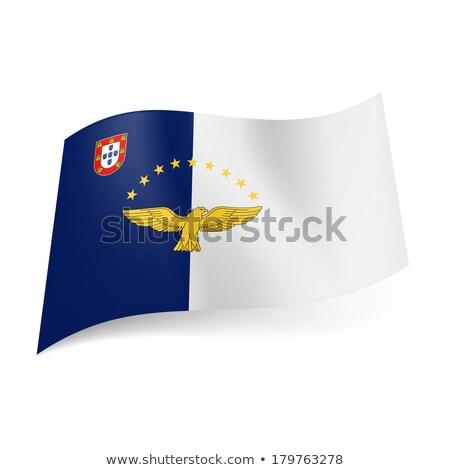 europeu · união · bandeira · luz · azul · céu · azul - foto stock © dinozzaver