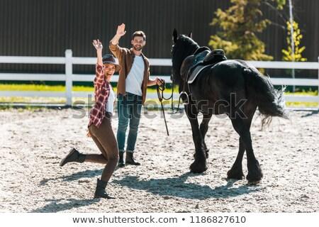 Waving Horse Stock photo © cteconsulting