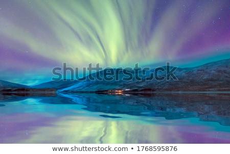 ノルウェーの 海岸 風光明媚な パノラマ 緑 島々 ストックフォト © Harlekino