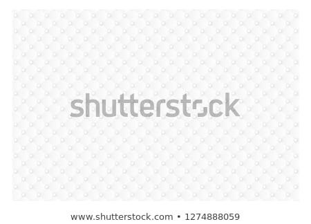 Leather Upholstery Stock photo © trgowanlock