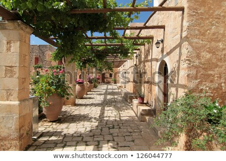 Garden Courtyard with beautiful flowers. Crete Stock photo © dashapetrenko