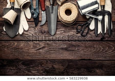 madeira · pá · pequeno · fogo · energia · poder - foto stock © melpomene