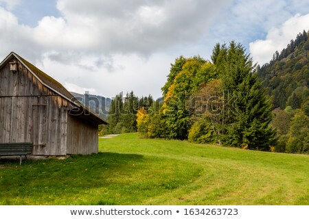 Stock photo: Mountain Meadow And Forest