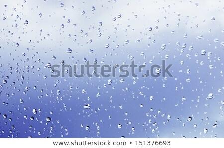 rain drops on bumpy surface Stock photo © sirylok