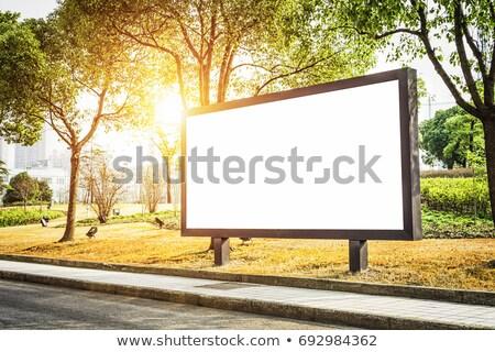 Marketing - Billboard on the Sunrise Background. Stock photo © tashatuvango
