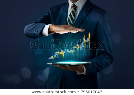Profit. Business Concept. Stock photo © tashatuvango