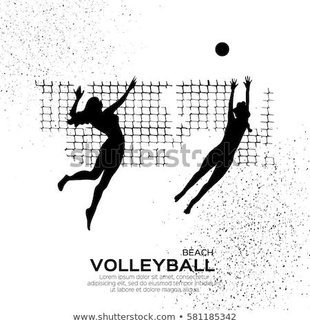 feminino · voleibol · jogador · bola · jovem - foto stock © nenetus