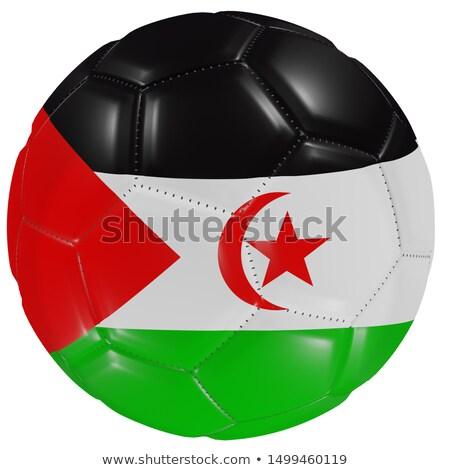 Zászló western Szahara futball csapat Stock fotó © MikhailMishchenko