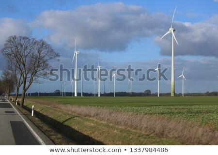 Zöld tájkép szél elektromos erőmű fák út Stock fotó © WaD