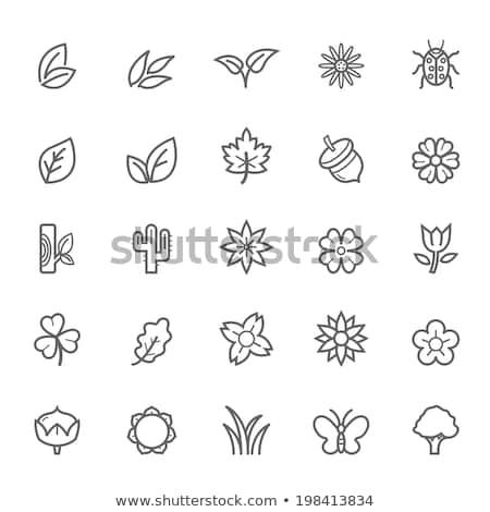 Grünen Vektor Symbol Design digitalen Daten Stock foto © rizwanali3d