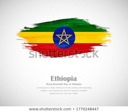 флаг Эфиопия окрашенный щетка твердый аннотация Сток-фото © tang90246