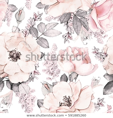 seamless pattern with pink roses stock photo © freesoulproduction