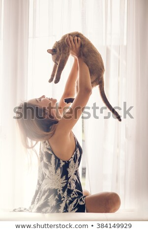 Thai chat patte gris isolé Photo stock © PetrMalyshev