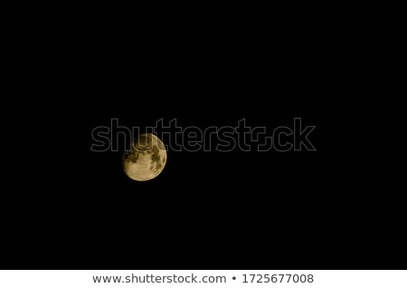 The Moon, Isolated in Black Space stock photo © Backyard-Photography