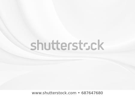 Beyaz vektör format dizayn dijital temizlemek Stok fotoğraf © balasoiu