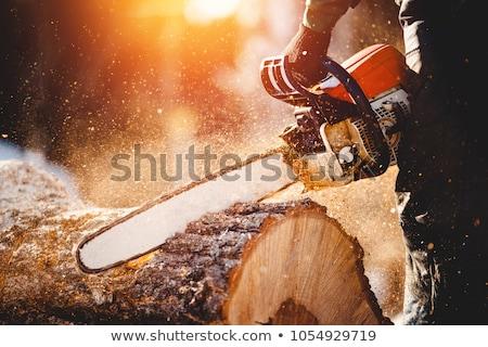 Man hout kettingzaag houthakker hard werken Stockfoto © klikk