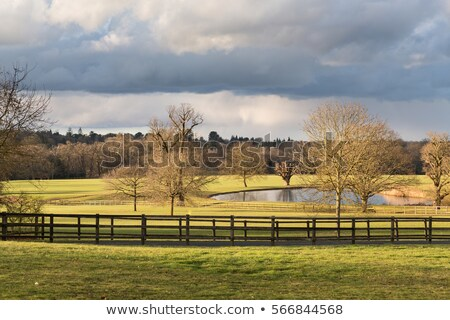 A lake in an old village in England as the winter sun appears af Stock photo © chrisukphoto