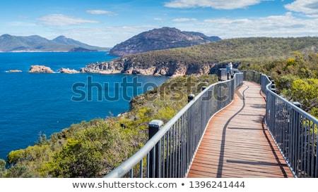 Karp parku tasmania krajobraz Zdjęcia stock © artistrobd