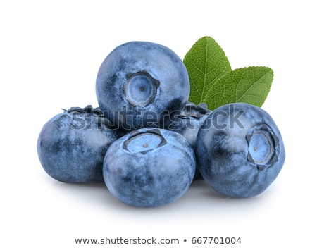 Orgânico mirtilos grupo branco comida azul Foto stock © bdspn
