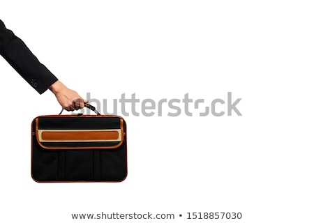 Businessman holding briefcase on white background Stock photo © bluering