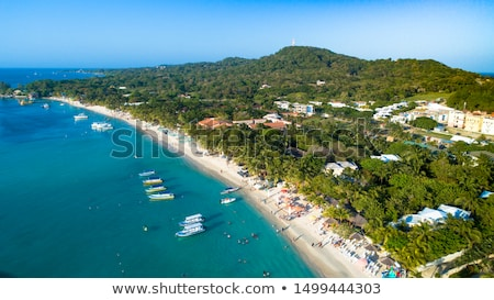 Beach of Isla Roatan in Honduras stock photo © p0temkin