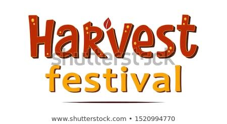 Cosecha festival tipografía ilustración palabras decorado Foto stock © lenm