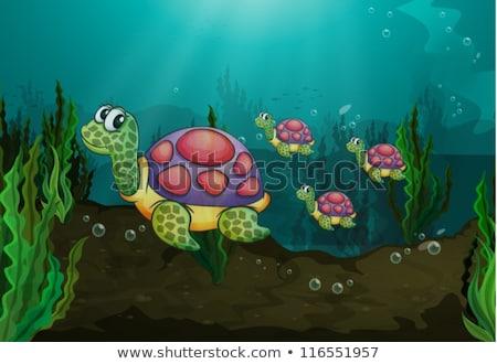 Happy turtle underwater reef scene Stock photo © bluering