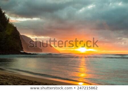 mist on the na pali coast stock photo © wildnerdpix