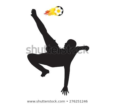 voetbal · brand · vliegen · voetbal · zwarte · vector - stockfoto © robuart