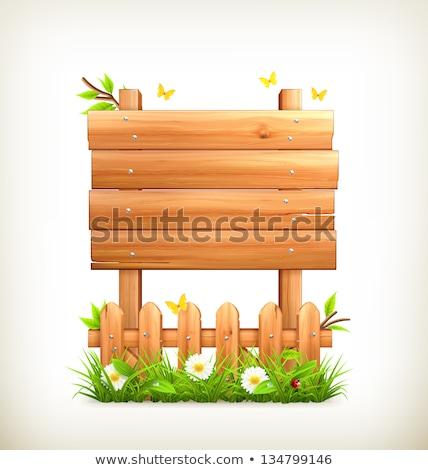 Signos insectos jardín ilustración papel Foto stock © colematt
