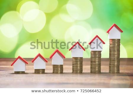 kobieta · interesu · rachunek · monet · biurko · młodych · szczęśliwy - zdjęcia stock © andreypopov