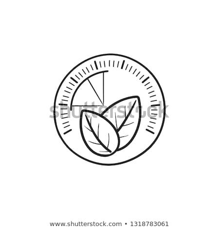 Speedometer with leaf hand drawn outline doodle icon. Stock photo © RAStudio