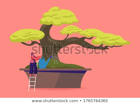 Bonsai Japanese Cartoon Vector Tree Growing In Pot Stok fotoğraf © pikepicture