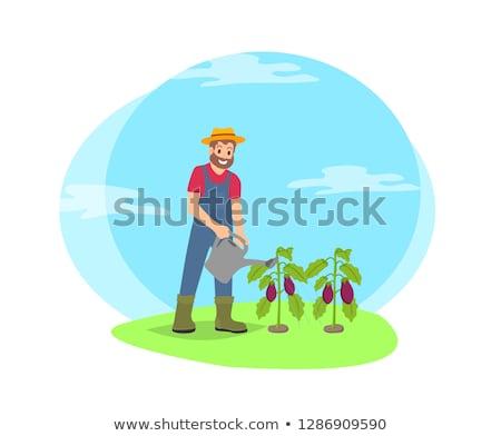 Farmer Watering Plants in Garden Cartoon Icon Сток-фото © robuart