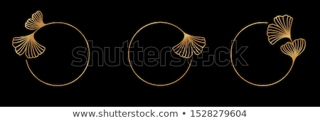Round banner with leaves of Ginkgo biloba Stock photo © blackmoon979