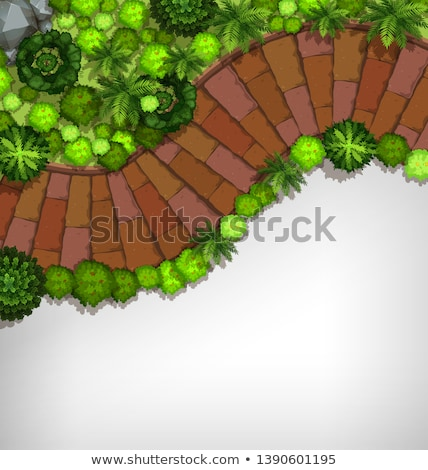 an aerial of garden stock photo © bluering