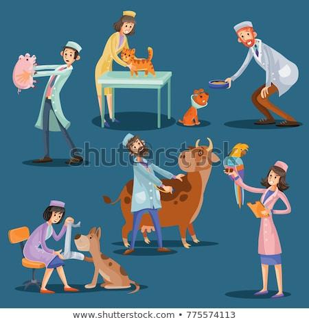Doctor taking care of cute puppy Stock photo © Kzenon