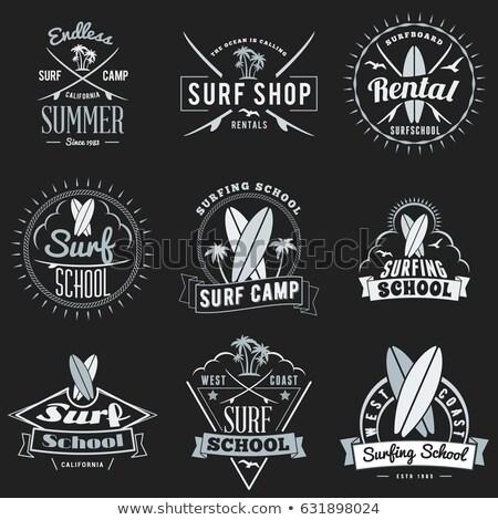 summer sale surfing board set vector illustration stock photo © robuart