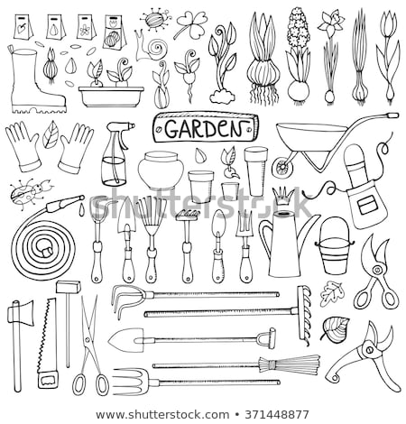 gardening gloves Garden Tool Cartoon Retro Drawing Stock photo © patrimonio