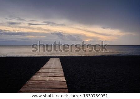 Strand Holz führend Meer fluffy Stock foto © amok