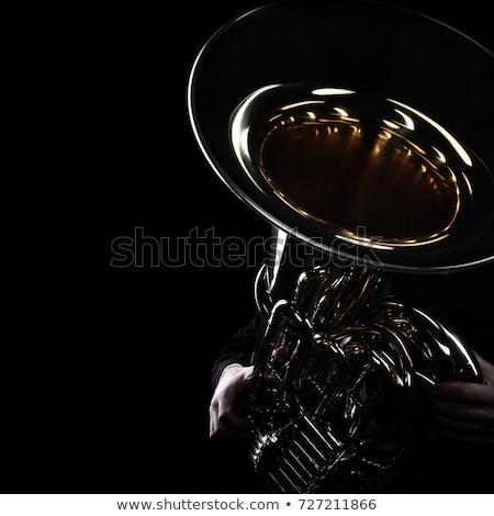 Bas tuba geïsoleerd zwarte messing goud Stockfoto © mkm3